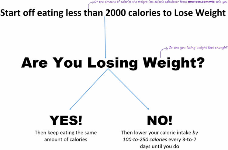 The Nowloss Diet 4 Steps To Eat Anything You Like To Lose Weight