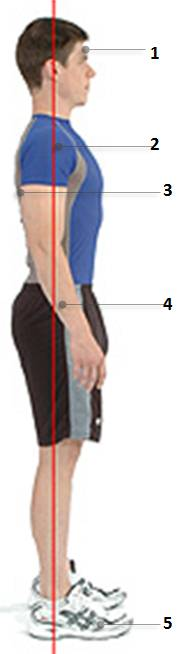 image of good standing posture