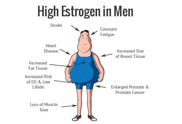 Men → How to Naturally Lower Estrogen Levels ← More