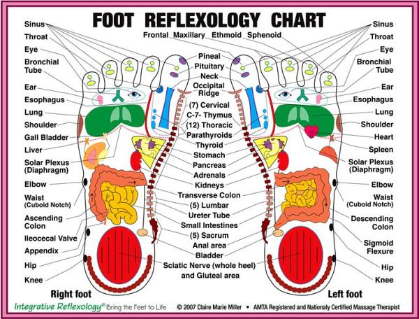 reflexology chart stress